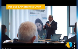 Per què SAP Business One?